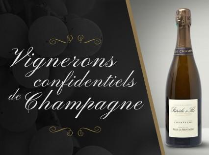 Vigneron Confidentiel de Champagne